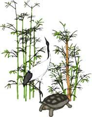 年賀状お正月のイラスト 鶴と亀 無料イラスト素材ダウンロード